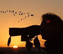 Bird watching, mallorca
